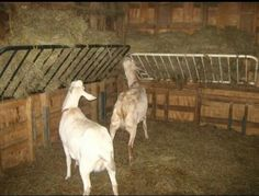 Old futon frames to hay feeders