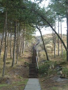 Isle of Terschelling. The Netherlands Places Around The World, The Places Youll Go, Places To Visit, Around The Worlds, North Sea, Pathways, Netherlands, Amsterdam, Stairs