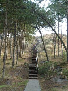 De trap naar de seinpost duin toe en als je daar boven op bezoek te heb je de uit zicht over west Terschelling