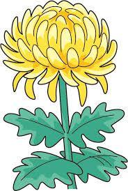 Aster Flower, Pen And Watercolor, Autumn Activities, Gerbera, Fall Flowers, Brush Pen, Kindergarten, Embroidery, Education