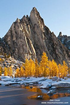 Prusik Peak and fall larches above Gnome Tarn in the Enchantment Lakes, Alpine Lakes Wilderness, Cascades, Washington