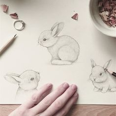 Is it Easter yet?  I am doing some pre-Easter studies because I am totally charmed by the loveliest @cottonbae Instagram account. Thank you for being so cute & adorable. Do you guys stalk any cute animals too?  #bunny #rabbit #pencil #draw #drawing #sketchbook #sketch #animals #furry #cute #easter #art #instaart #artsy #artoftheday #doodle #illustration #illustrator #nature #creative