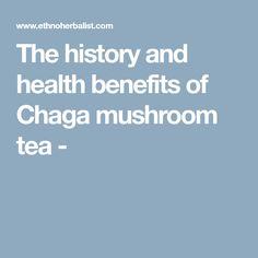 The history and health benefits of Chaga mushroom tea -