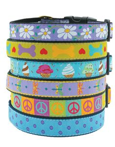 Got the Daisy one for Hannah.  These Collars and Leashes last and look good for at least 4 years and longer.