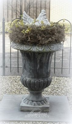 Chicken urn