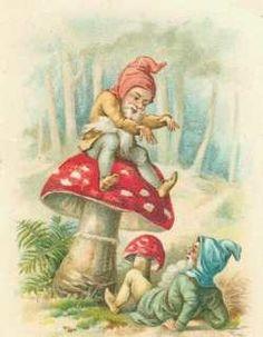 Intalniri cu invizibilul (elfi, zane, gnomi, ingeri)