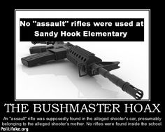 OBAMA CARTOONS: Bushmaster Hoax: No assault rifles were used at Sandy Hook Elementary????