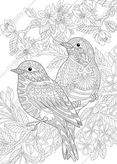 Coloring Pages For Adults Love Birds Spring Flowers Blossoming Tree Floral Colouring Animal Book Instant Download Print