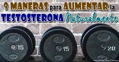 A partir de los 30 años, los niveles de testosterona de un hombre comienzan a disminuir, así que debe saber cómo aumentar la testosterona naturalmente y como combinarlo con un estilo de vida saludable. http://ejercicios.mercola.com/sitios/ejercicios/archivo/2014/06/19/aumento-de-niveles-de-testosterona.aspx