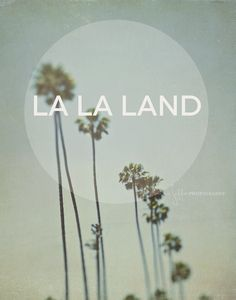 Los Angeles photography, typography print, palm trees, California dreaming, travel photo, font, green gray, summer vacation