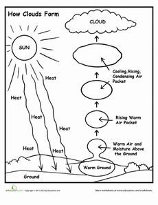 How Clouds Form School Weather science, Science worksheets, Elementary science Kindergarten Science, Elementary Science, Science Classroom, Teaching Science, Science Education, Physical Science, 4th Grade Science Lessons, Health Education, Physical Education