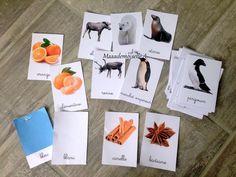 Develop Pictures, My Job, Kids Education, Cool Kids, Homeschool, Table, Fun, Emperor Penguin, Montessori Kindergarten
