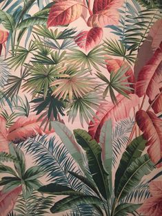 In this wallpaper. Tropical Art, Tropical Vibes, Tropical Leaves, Flower Wallpaper, Parrot Wallpaper, Forest Wallpaper, Palm Tree Print, New Backgrounds, Tropical Pattern