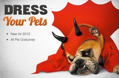 Dog Costumes | Halloween Pet Costumes for Dogs - BuyCostumes.com