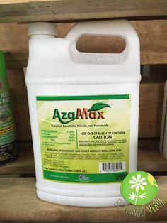 AzaMaz, es un producto natural con un amplio espectro de control de plagas en plantas, conocido por sus innumerables beneficios.  Los mejores productos para cultivos de venta en El Mundo Verde.  Visita nuestra página www.elmundoverde.mx