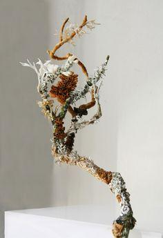 lichen2web
