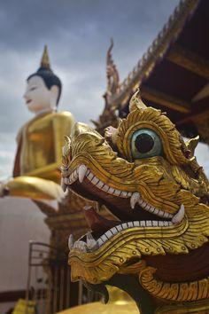 Buenos días desde Tailandia, #FelizMartes / Good morning From Thailand. #HappyTuesday Chiang Mai Naga, Thailand