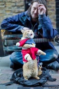 """""""A Street Cat Named Bob.. James, a once homeless recovering heroin addict, met Bob the ginger cat during a very dark period, and credits the feline with giving him a purpose in life. It has been Bob, who over the past five years, has helped give James the strength to stay off drugs, driven him to earn money and get his life back on track."""""""