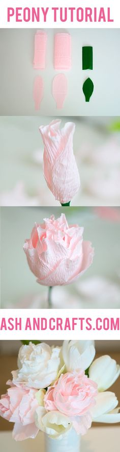 Paper Peony Tutorial - Ash and Crafts                                                                                                                                                                                 More