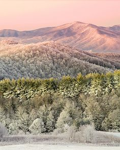 predawn light, Appalachian Winter -- Max Patch Mountain, NC, by Scott Hotaling