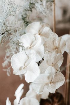 Mrs Gibbons Flowers presents her intuitively designed floral installation delicately honoring those in current bloom by curating a blend of inspiration from modern architecture and Mother Nature herself. Wedding Arrangements, Floral Arrangements, Flower Arrangement, Moth Orchid, Flower Installation, Wedding Playlist, Floral Centerpieces, Minimalist Wedding, Ethereal Beauty