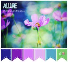 Allure Color Palette - Inspire Sweetness  http://inspiresweetness.blogspot.com/2013/11/allure-color-palette.html