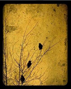from the songbird series by Many Muses Studio. Reminds me of the photo that Jen took at Sara and Rebecca's. Gold Leaf Art, Gold Art, Feuille D'or, Encaustic Art, Easy Paintings, Mellow Yellow, Art Plastique, Asian Art, Japanese Art