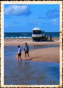 Frasier Island Australia