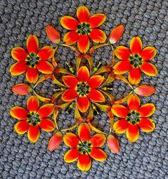 Flower-Mandalas-by-Kathy-Klein_10.jpg (600×642)