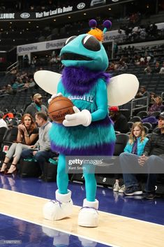 Hugo of the Charlotte Hornets is seen prior to the game against the Washington Wizards on March 2019 at Spectrum Center in Charlotte, North Carolina. Carolina Pride, North Carolina, Washington Wizards, Basketball Leagues, Charlotte Hornets, Spectrum, Nba, March, Game