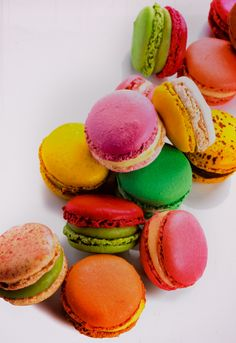 "saturated color: macarons  millie says, ""my favorite sweet is cookies"""