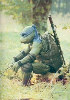 Nada más triste que una Tortuga Ninja Triste.