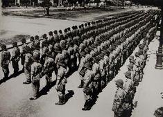 Os Pracinhas na Segunda Guerra | Gazeta do Povo