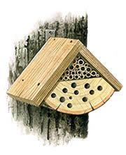 Illustration og bug box