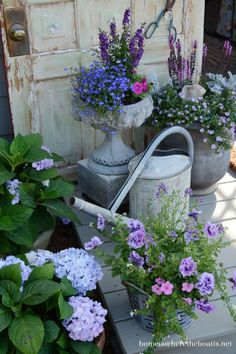 Pretty containers...blue lobelia, purple bacopa, dark purple angelonia, double petunias, pink impatiens, dusty miller....blue hydrangeas  look great, but in zone 4, must be planted.