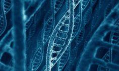 Junk DNA & Human Consciousness ~ http://www.wakingtimes.com/2014/10/13/junk-dna-human-consciousness/