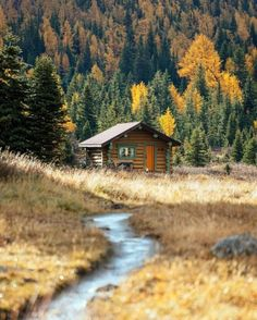 #LogCabin #Cabin #House #Cottage Rustic, Autumn, Wood, Forest - Follow #extremegentleman for more pics like this!
