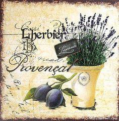 lavande L'herbier Provenzal--- Flores & Jardinería
