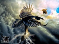 Huginn and Muninn by thecasperart on DeviantArt
