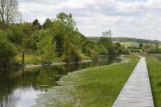 Wet-Meadow-Source-River-Norges-Territoires-16  Landscape Architecture Works | Landezine