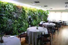 Vertical Garden Installations - 5/6 - Living walls and Vertical Gardens