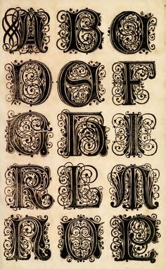 Ornate Lettering | Illustrated.Monthly