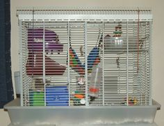 Homemade Pet Rat Cage - Custom Large Cage That is Easy to Build