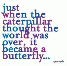 Just when the caterpillar thought the world was over, it became a butterfly... #PANDORAloves #Quote