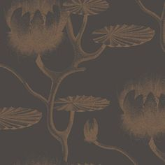 Cole & Son - Contemporary Restyled - Lily at www.vertigohome.us