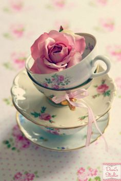 Teacups and Rose