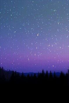 Looking into the sky in a quiet place and seeing falling stars, gives me hope. Ciel Nocturne, Sky Full Of Stars, Galaxy Wallpaper, Milky Way, Oeuvre D'art, Night Skies, Sky Night, Stars At Night, Beautiful World