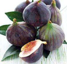 Ako si vypestovať figy   Urob si sám Pesto, Avocado, Gardening, Fruit, Vegetables, Flowers, Beautiful, Color, Jar