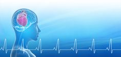 -*+What do researchers mean when they talk about heart-brain interactions? Researchers with the HeartMath Institute and other entities have shown that the human heart, in addition to its other functions, actually possesses the equivalent of its own brain, what they call theheart brain, which interacts and communicates with the head brain. This heart brain communicates …