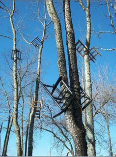 These recycled chairs, mounted on trees in a forest, show the circle of life. Designed as an art installation by American artist Tom Shields, they can be seen in the North Carolina Museum of Art in Raleigh, North Carolina.